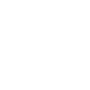 What are Basics?